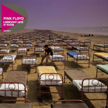 PINK FLOYD - A MOMENTARY LAPSE OF REASON (Винил)
