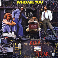 The Who Who Are You (Винил)