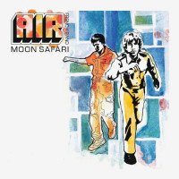 AIR MOON SAFARI (Винил)
