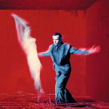 Peter Gabriel Us (2Винил)